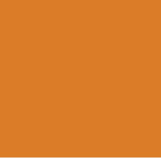 RAGAGEP_Icon_Light_Orange