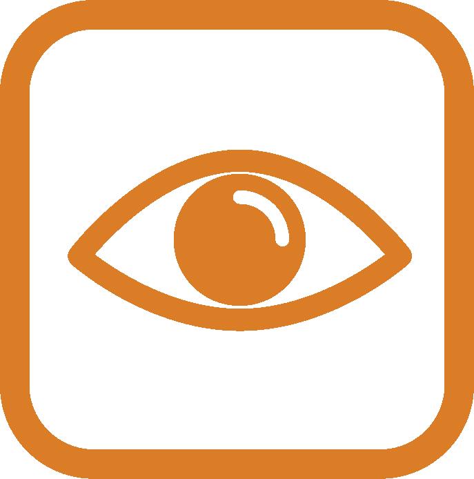 VisualInspection_Icon_Light_Orange